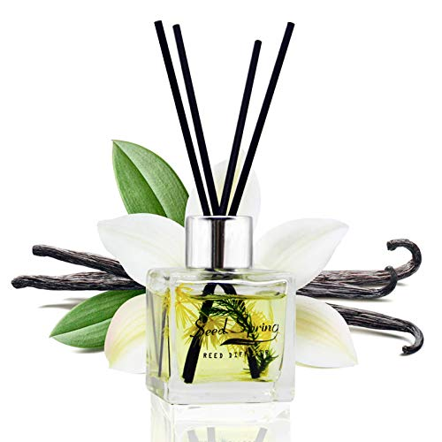 Seed Spring Diffuser Set with Sticks