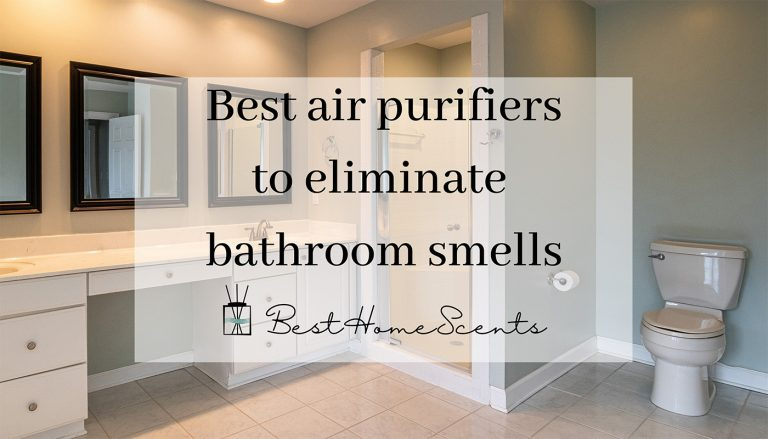Air purifier for bathroom smells – The best models