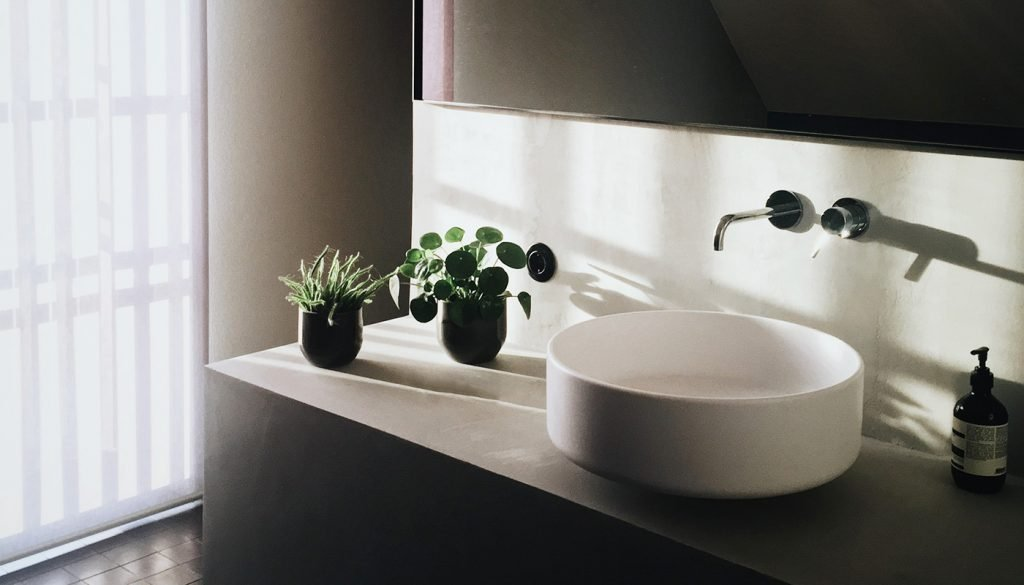 Plants in the bathroom next to sink