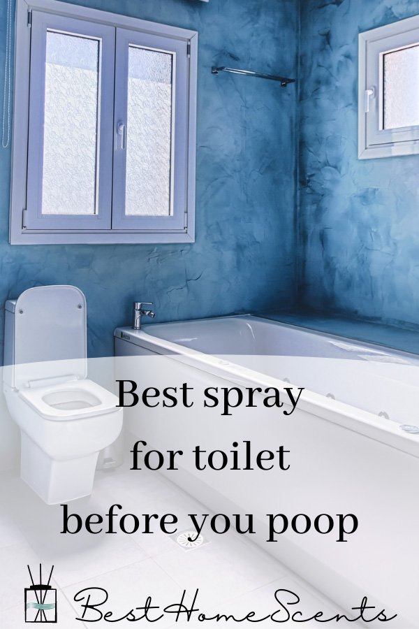 Best before you go toilet sprays pin