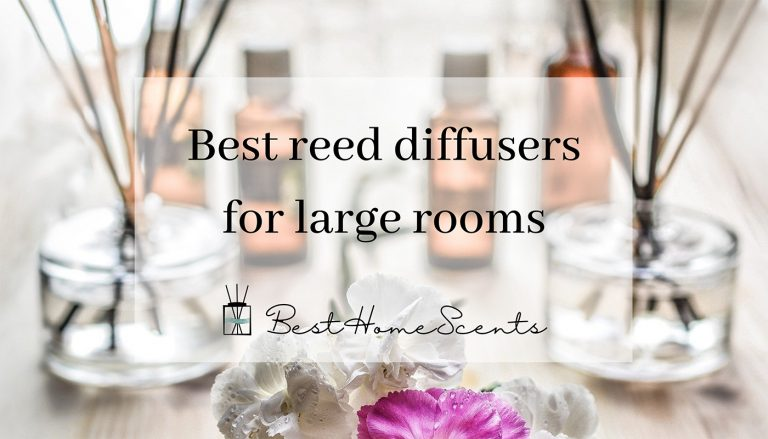 Which is the Best Reed Diffuser for Large Room