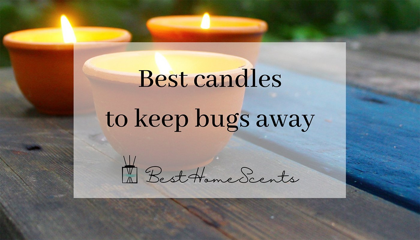 Best candles to keep bugs away
