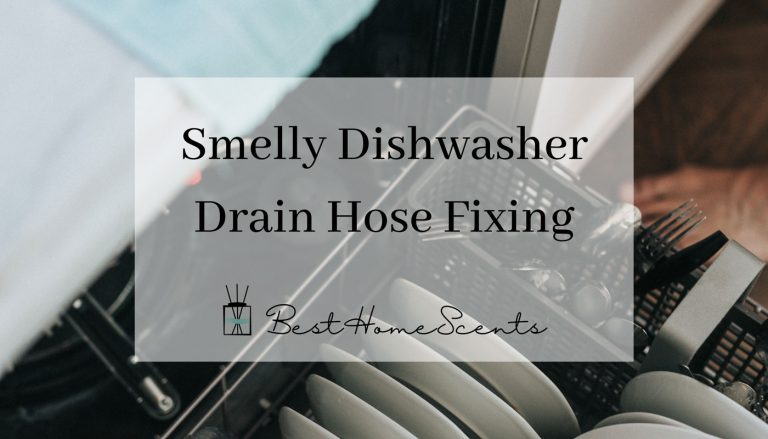 Why Does My Dishwasher Drain Hose Smell & How To Stop It