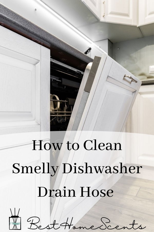 Why does my dishwasher drain hose smell pin