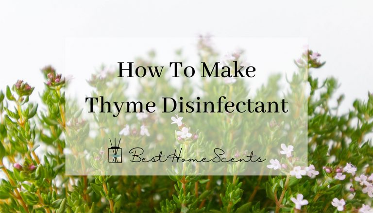 How to Make Thyme Disinfectant Spray to Clean the Kitchen