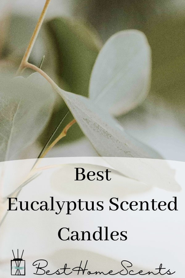 Best eucalyptus scented candles pin