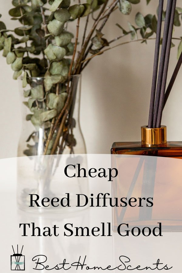 Cheap reed diffusers that smell good pin